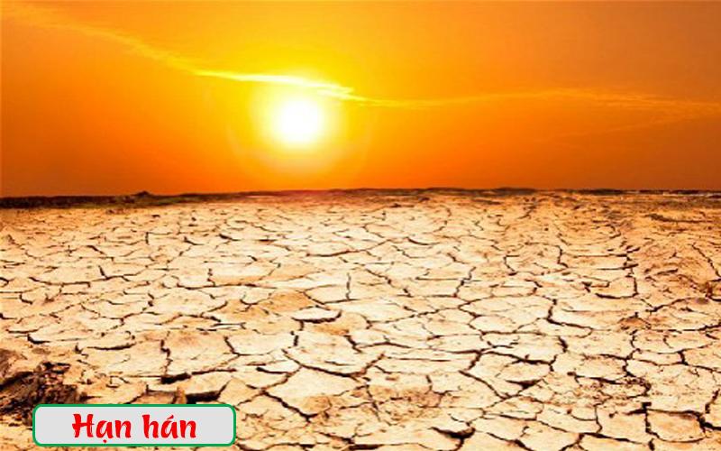 Thảm họa lịch sử El Nino có khả năng tái diễn