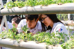 Chia sẻ và tìm hiểu về ngành kỹ thuật môi trường