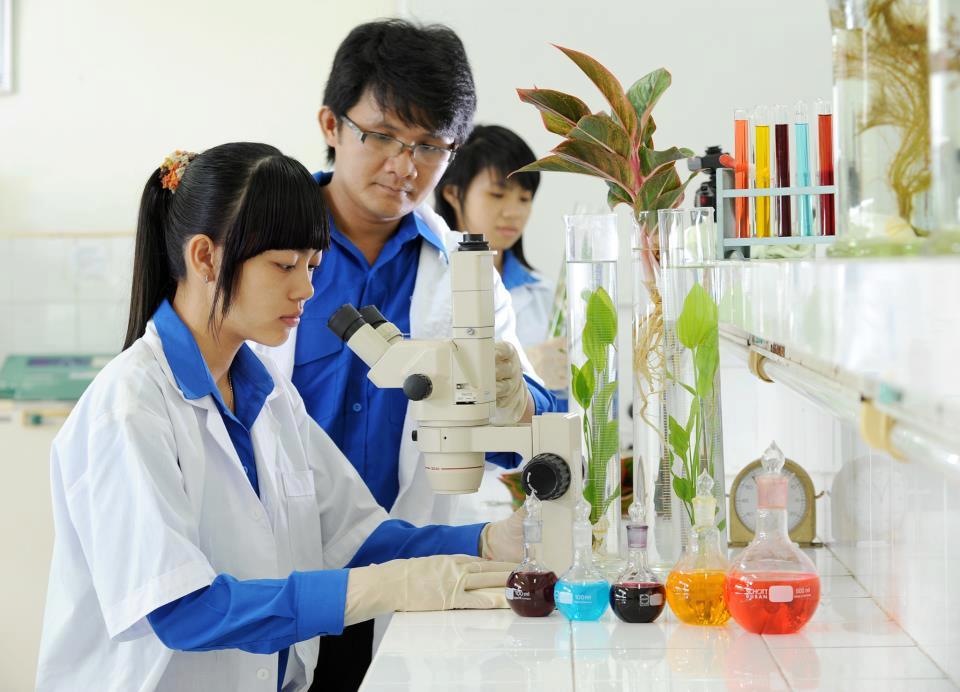 Ngành khoa học môi trường là một trong các ngành về ngành môi trường nói chung