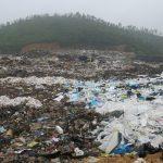 Ô nhiễm môi trường đất là gì? Biện pháp khắc phục ô nhiễm môi trường đất